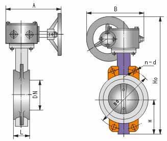 D371蝸輪對夾式軟密封蝶閥結構圖